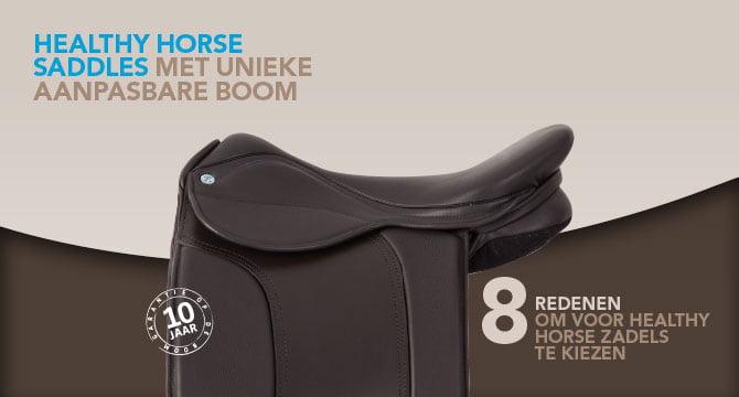 Healthy Horse Saddle